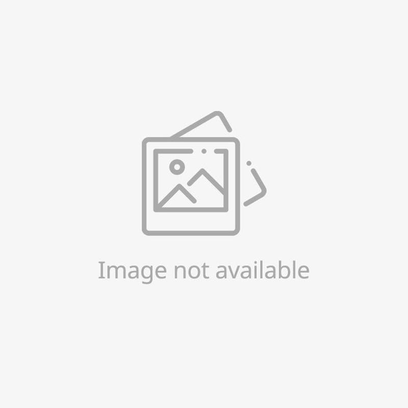 Splash Collection - Earrings